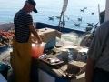 Barca a vela Eolie Verso Sud Charter20130617_084403.jpg
